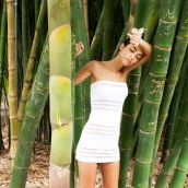 cha cha in the bamboo