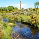 Stream near old china clay works near Heneward, Bodmin Moor