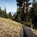 far cry 5 flower field