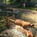 Far Cry 3 - 720P