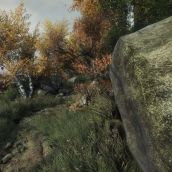 The Vanishing of Ethan Carter (3D fixed)