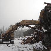 lumber yard in winter