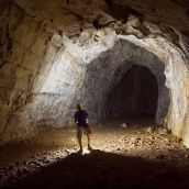 Caver and tunnel