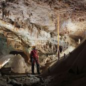 Caver and column