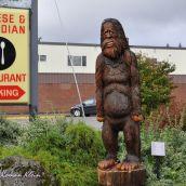 Bigfoot Footage, British Columbia