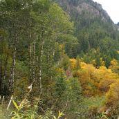 Mountain Loop Hwy Washington