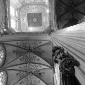 Sint-Jan Cathedral Den Bosch 3D