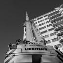 Crane Rotterdam 3d