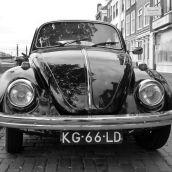 VW Beetle Holland