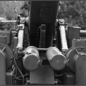 Cannon Blockhaus 3D