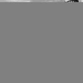 Forum of Augustus Rome 3D