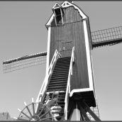 Windmill Brielle 3D