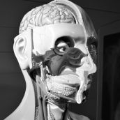 Boerhaave Museum Leiden 3D