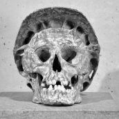 Homo Consructor 3D