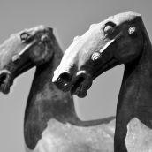 Horses of Han-Dynasty 3D