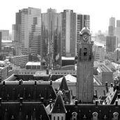 Stadhuis Rotterdam from Hofpoort 3D