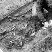 Opgraving Graveyard St.Laurenskerk Rotterdam 3D
