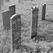 Graveyard Schoonhoven 3D