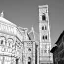 Florence 3D