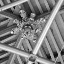 detail ceiling NieuweKerk Den Haag 3D