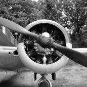 Beechcraft Arnhems Oorlogsmuseum 3D