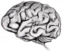 BrainPowered