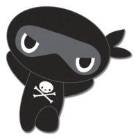 Skull Ninja Labs