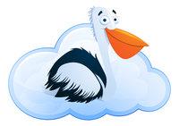 CloudPelican