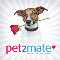 PET2MATE - All about your pet