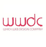 Which Web Design Company