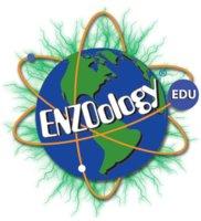 Enzoology Education