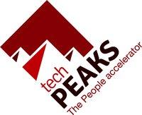 TechPeaks Batch #1