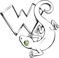 White Salamander Board Company