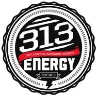 313Energy
