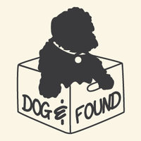 Dog and found