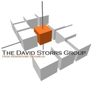 The David Storrs Group