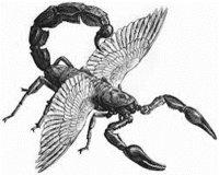 Flying Scorpions