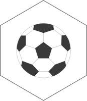 SoccerGut