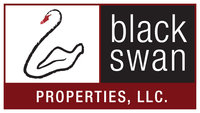 Black Swan Investment Partners