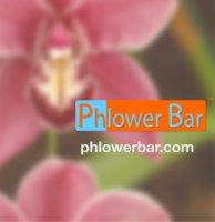 Phlower Bar