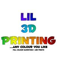 Lil 3D Printing
