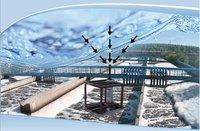 Abadan International Energy, LLC
