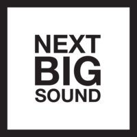 Next Big Sound logo