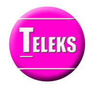 Teleks Search System