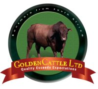 Golden Cattle Ltd