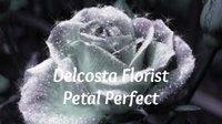 Delcosta Florist