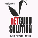 Netgurusolution India Pvt. Ltd.