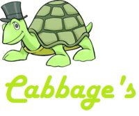 Cabbage's
