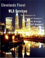 WLS Services