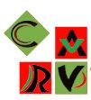 Carv Info Solutions